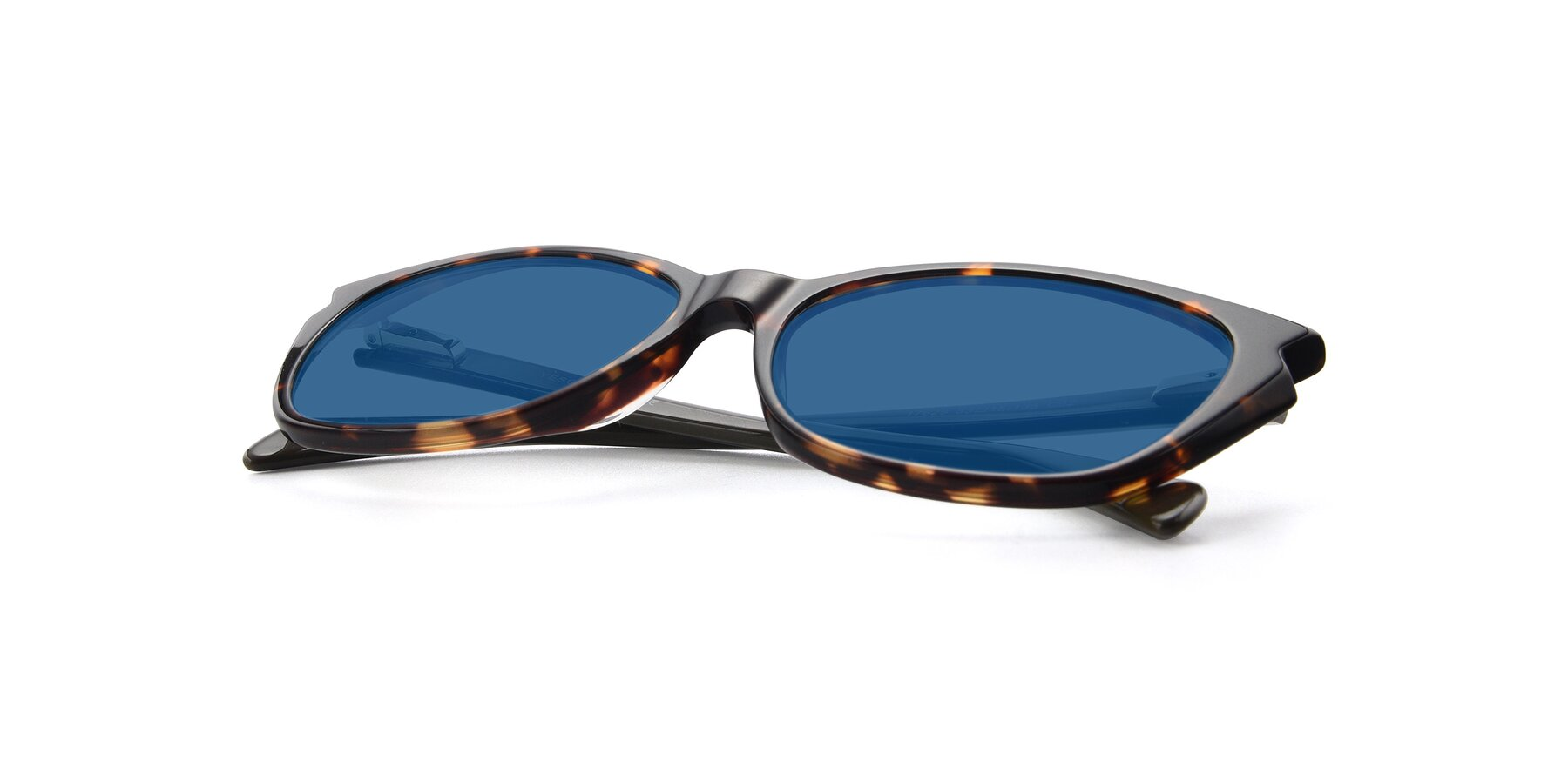 View of 17629 in Tortoise with Blue Tinted Lenses