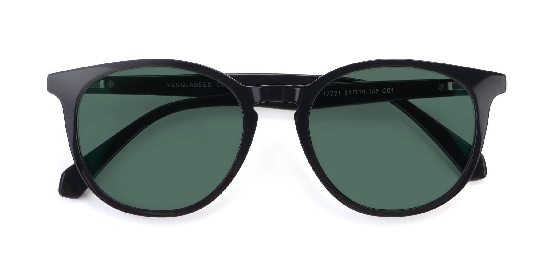 Folded Front of 17721 in Black with Green Polarized Lenses