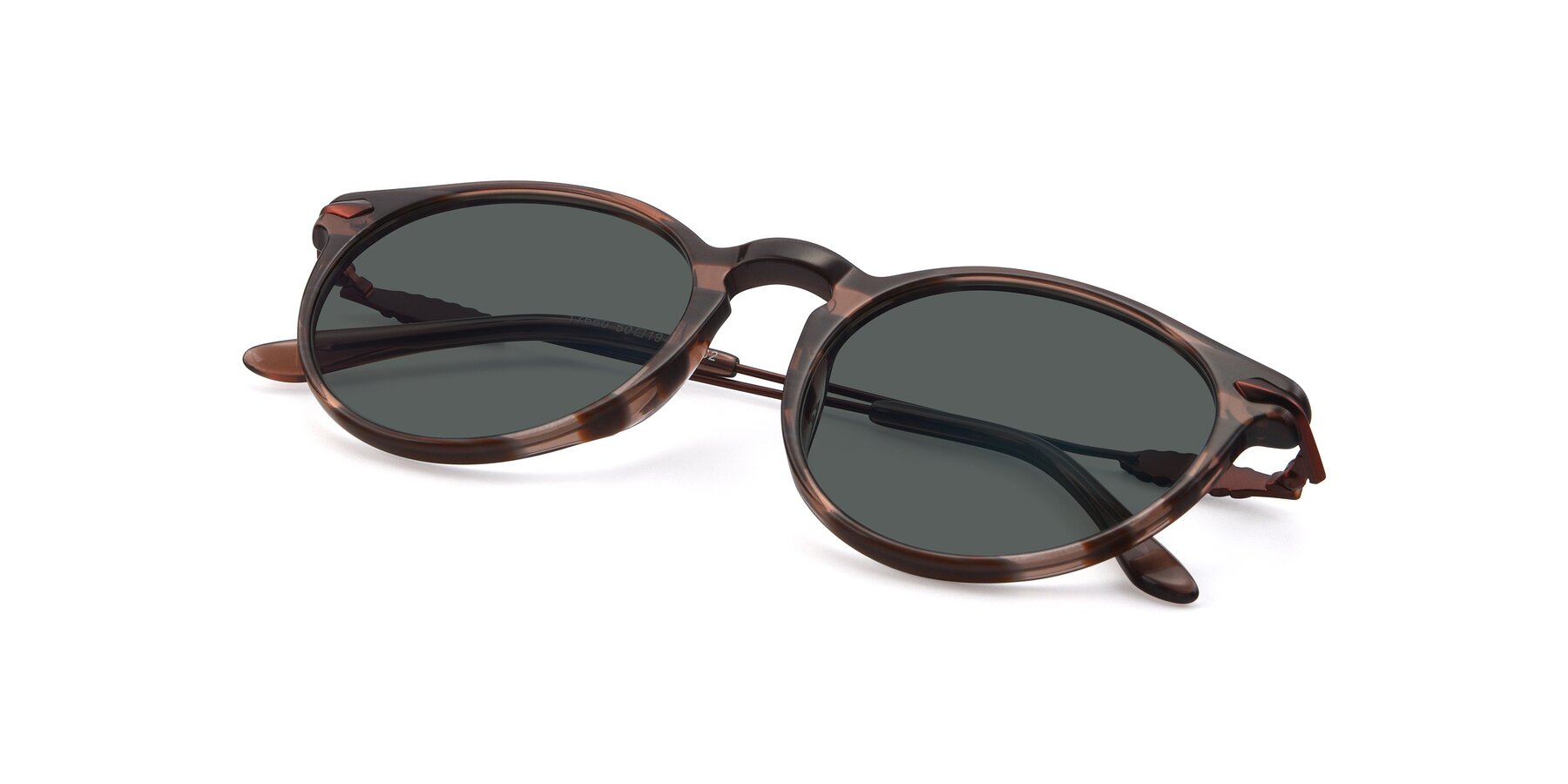 View of 17660 in Stripe Brown with Gray Polarized Lenses