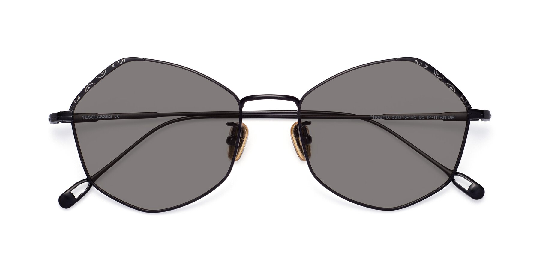 Folded Front of Phoenix in Black with Medium Gray Tinted Lenses