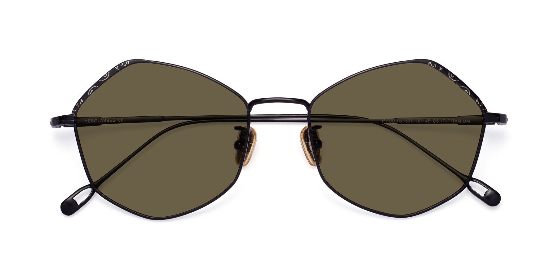 Folded Front of Phoenix in Black with Brown Polarized Lenses