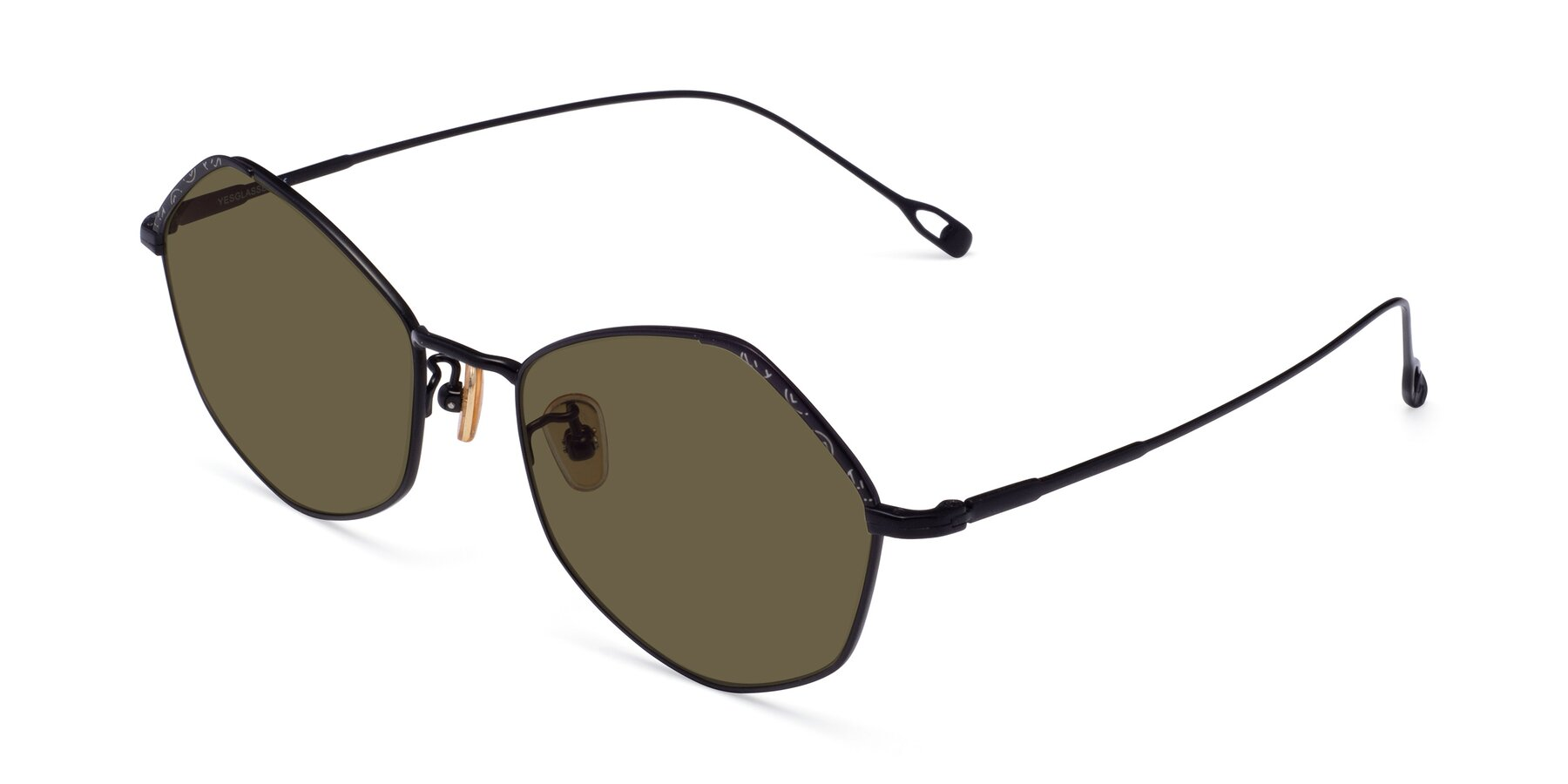 Angle of Phoenix in Black with Brown Polarized Lenses