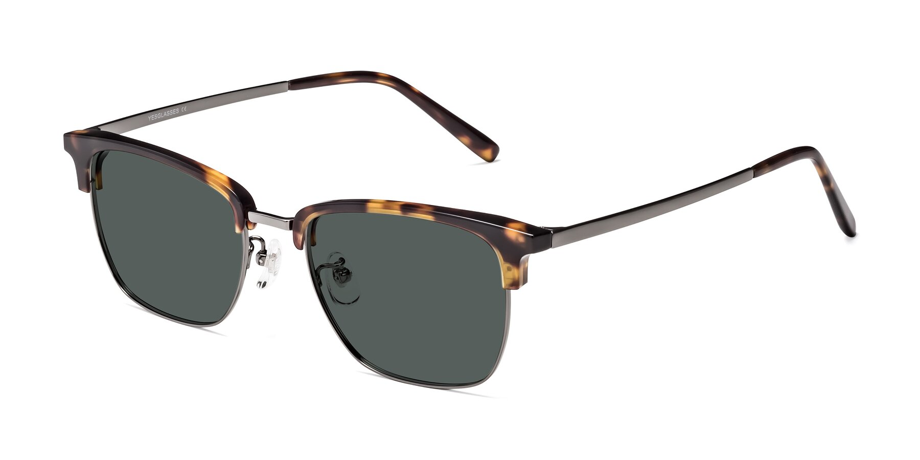 Angle of Milpa in Tortoise with Gray Polarized Lenses