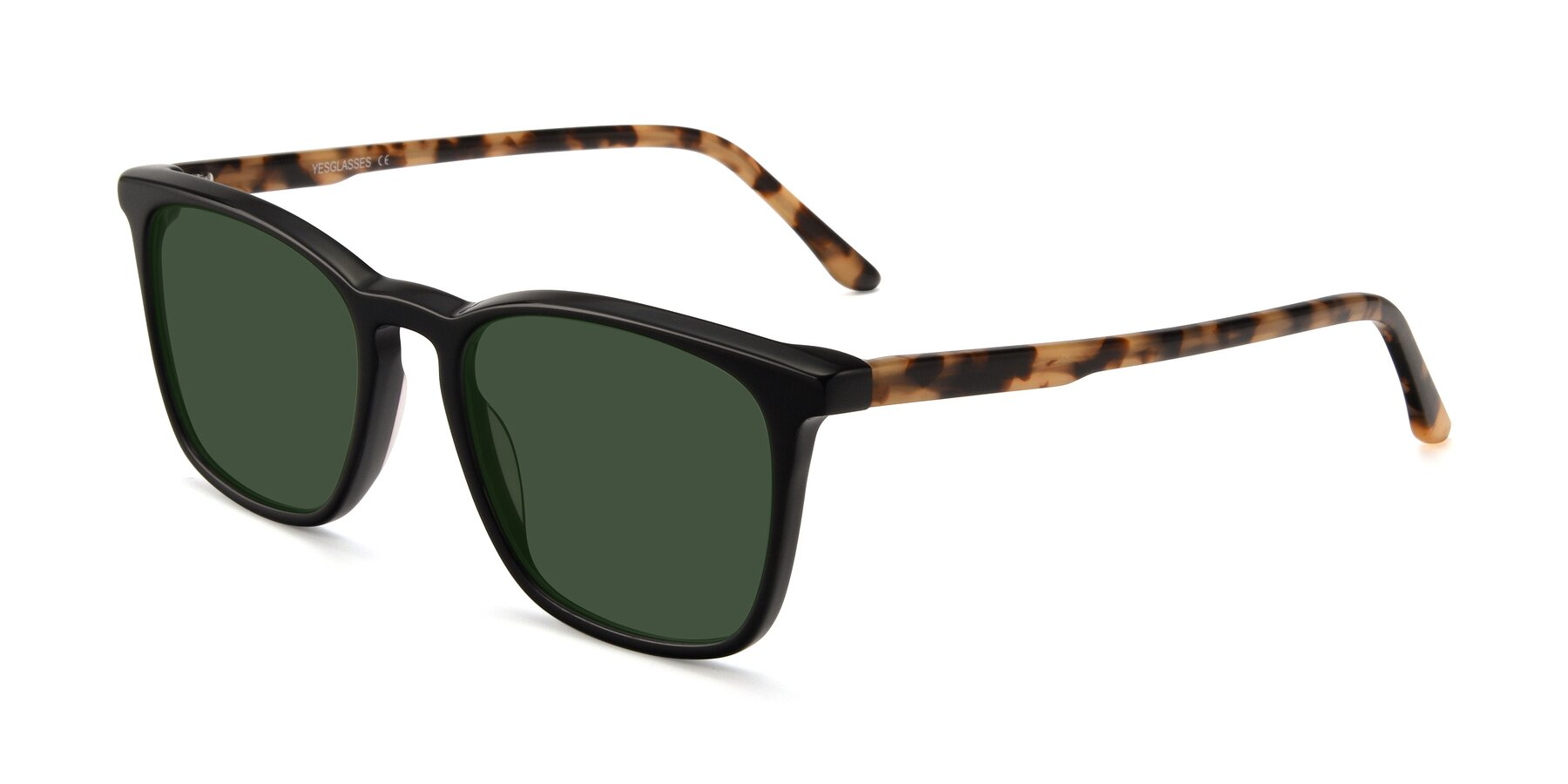 Angle of Vigor in Black-Tortoise with Green Tinted Lenses
