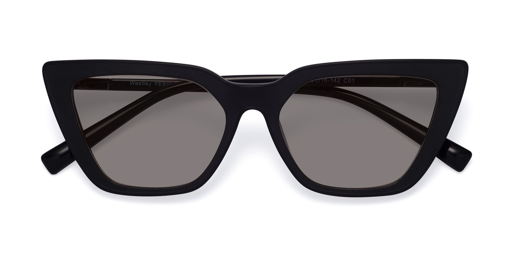 Folded Front of Westley in Matte Black with Medium Gray Tinted Lenses