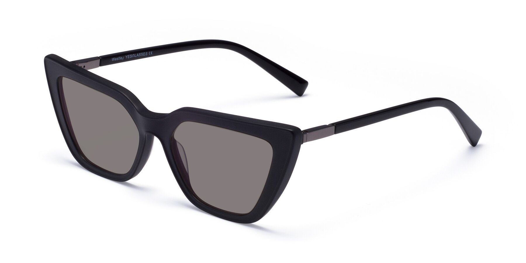 Angle of Westley in Matte Black with Medium Gray Tinted Lenses