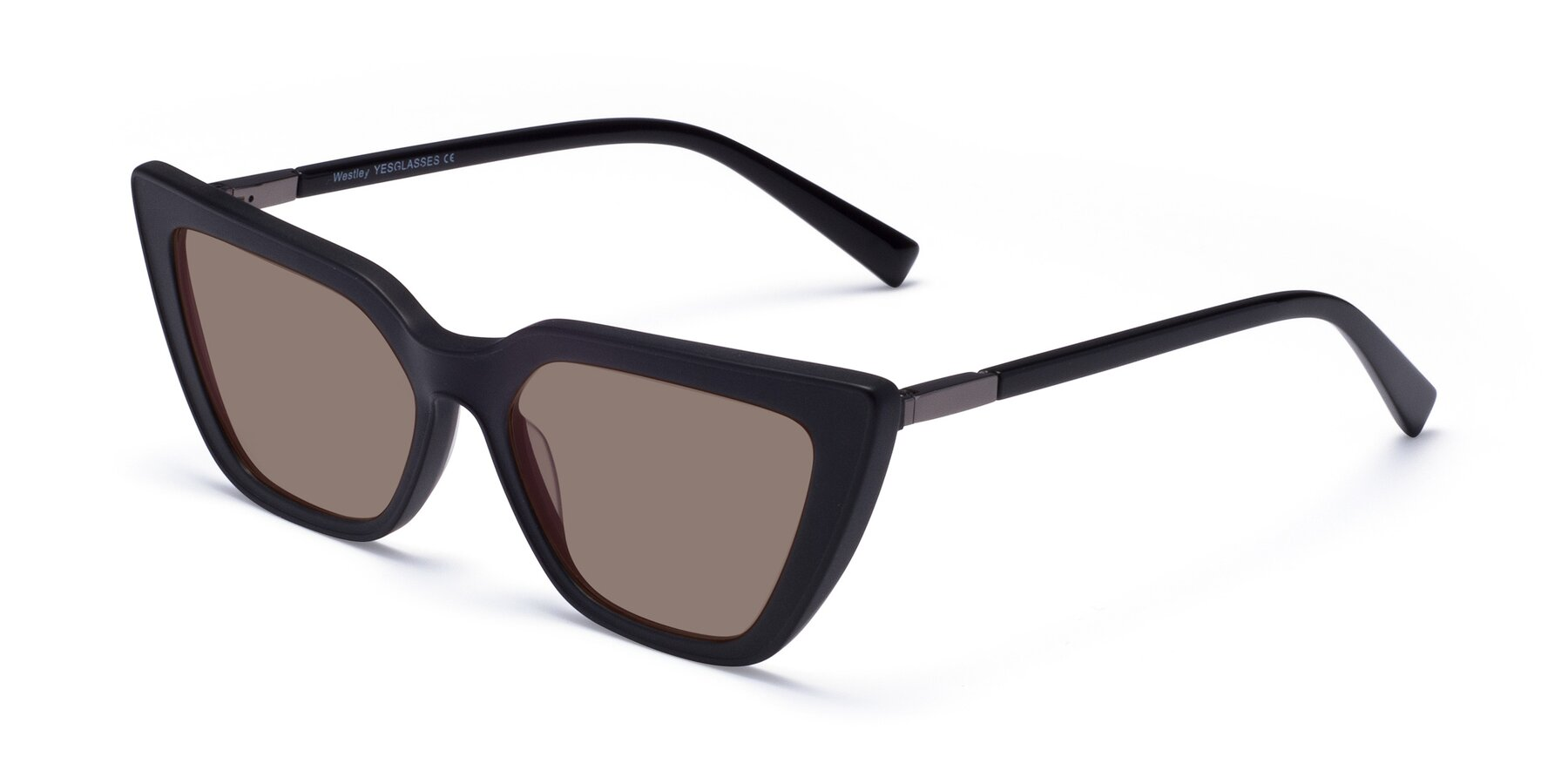 Angle of Westley in Matte Black with Medium Brown Tinted Lenses