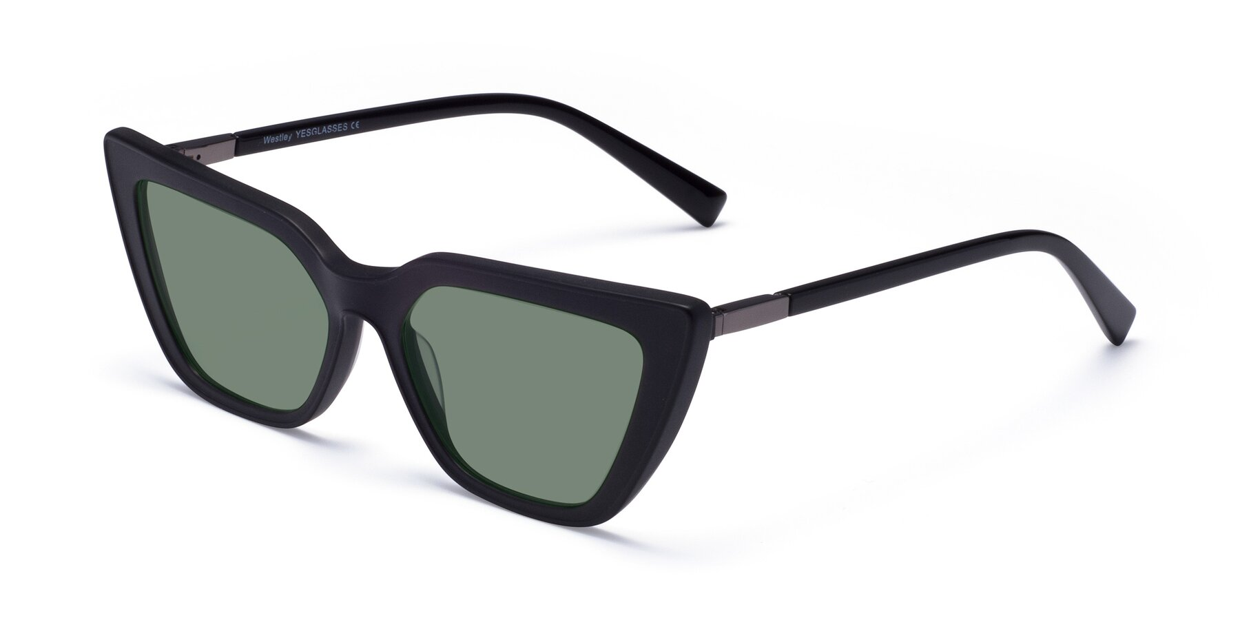 Angle of Westley in Matte Black with Medium Green Tinted Lenses