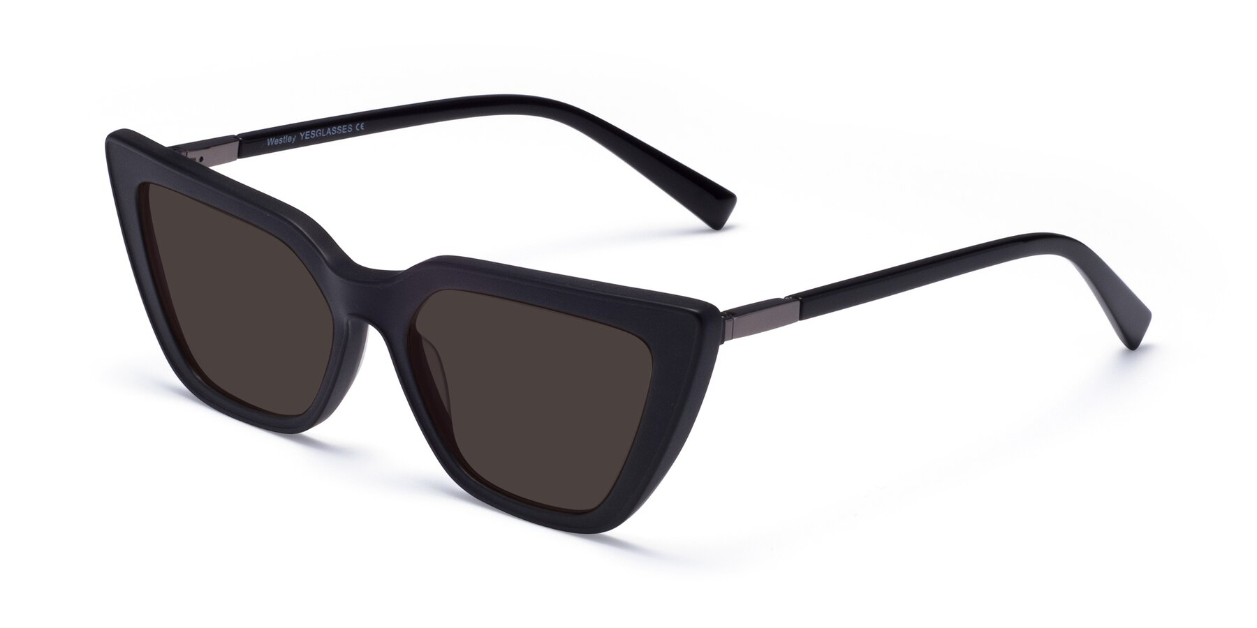 Angle of Westley in Matte Black with Gray Tinted Lenses