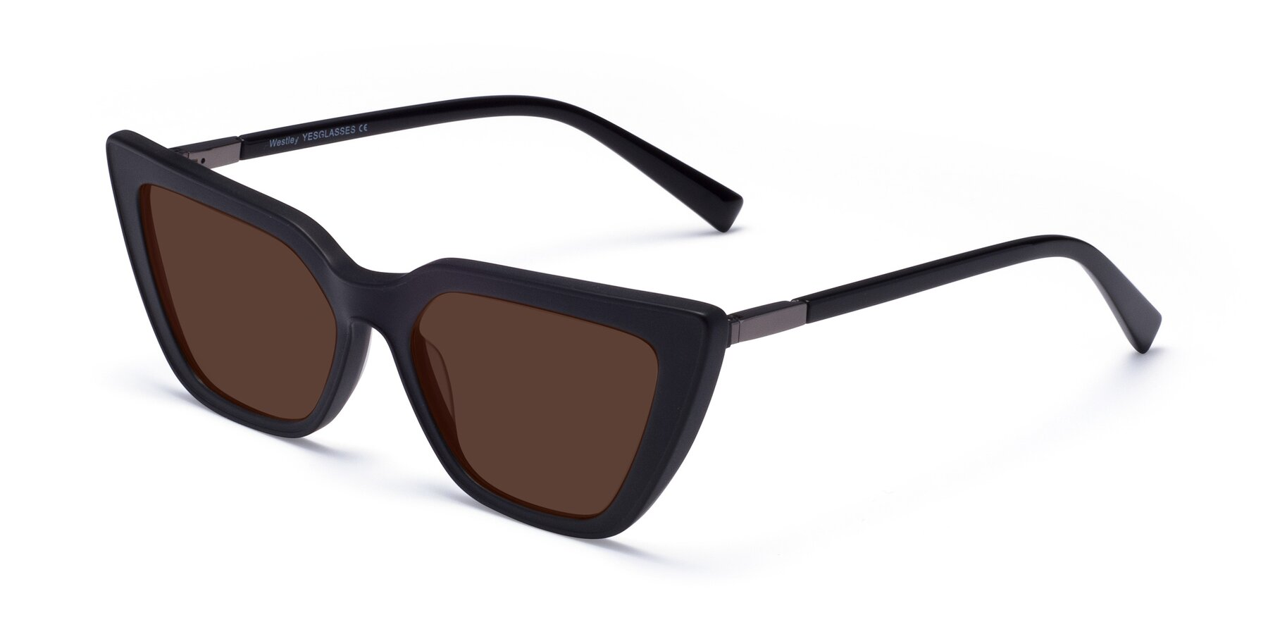 Angle of Westley in Matte Black with Brown Tinted Lenses