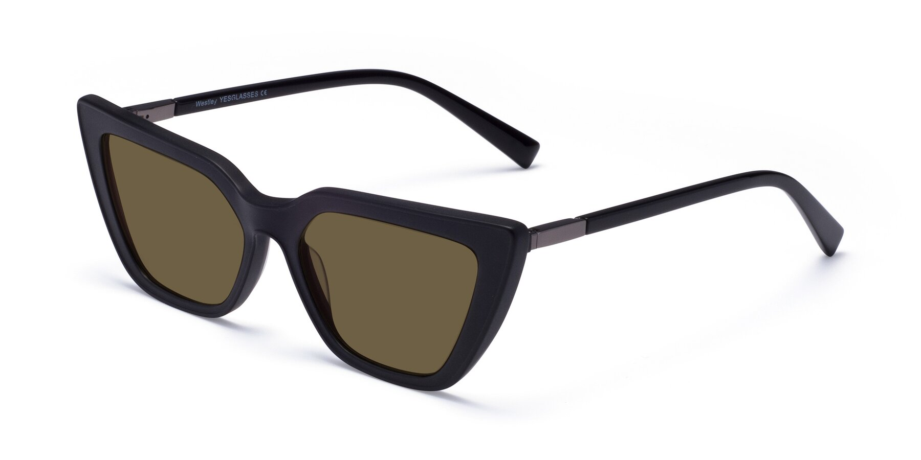 Angle of Westley in Matte Black with Brown Polarized Lenses
