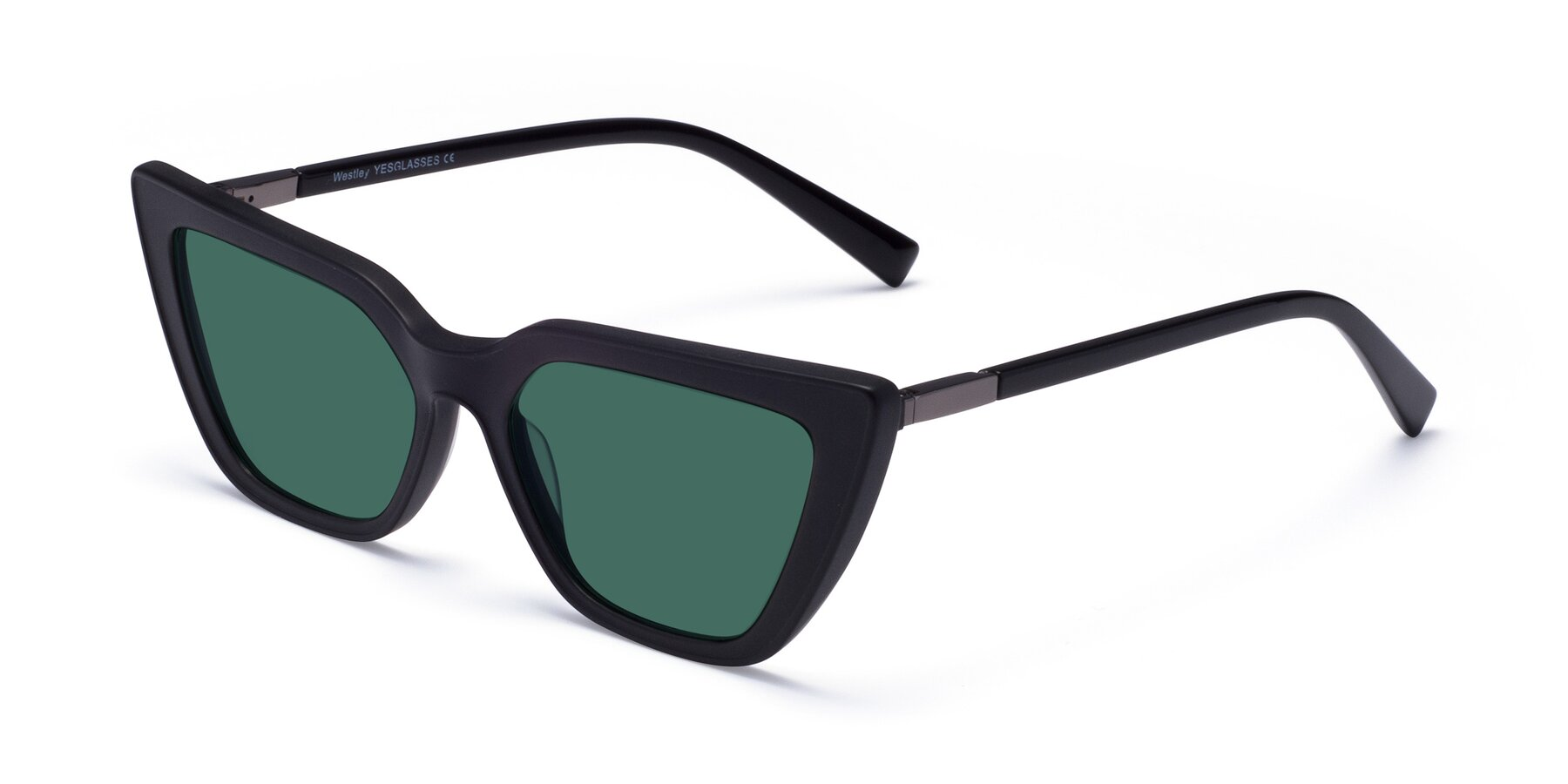 Angle of Westley in Matte Black with Green Polarized Lenses