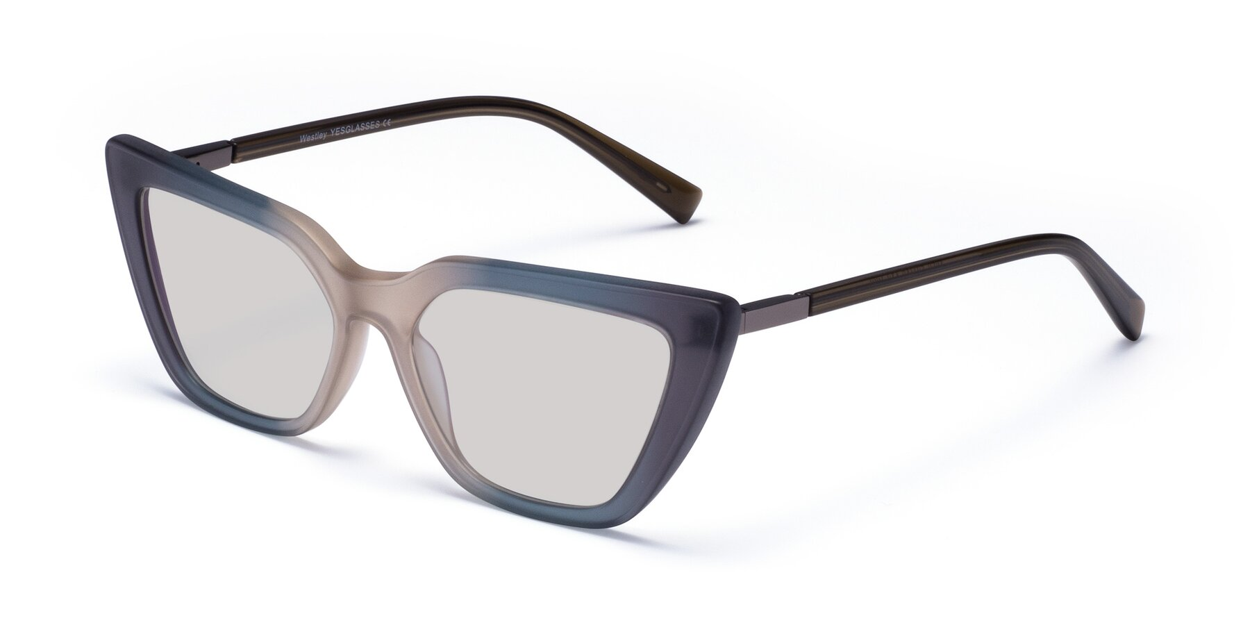 Angle of Westley in Gradient Grey with Light Gray Tinted Lenses