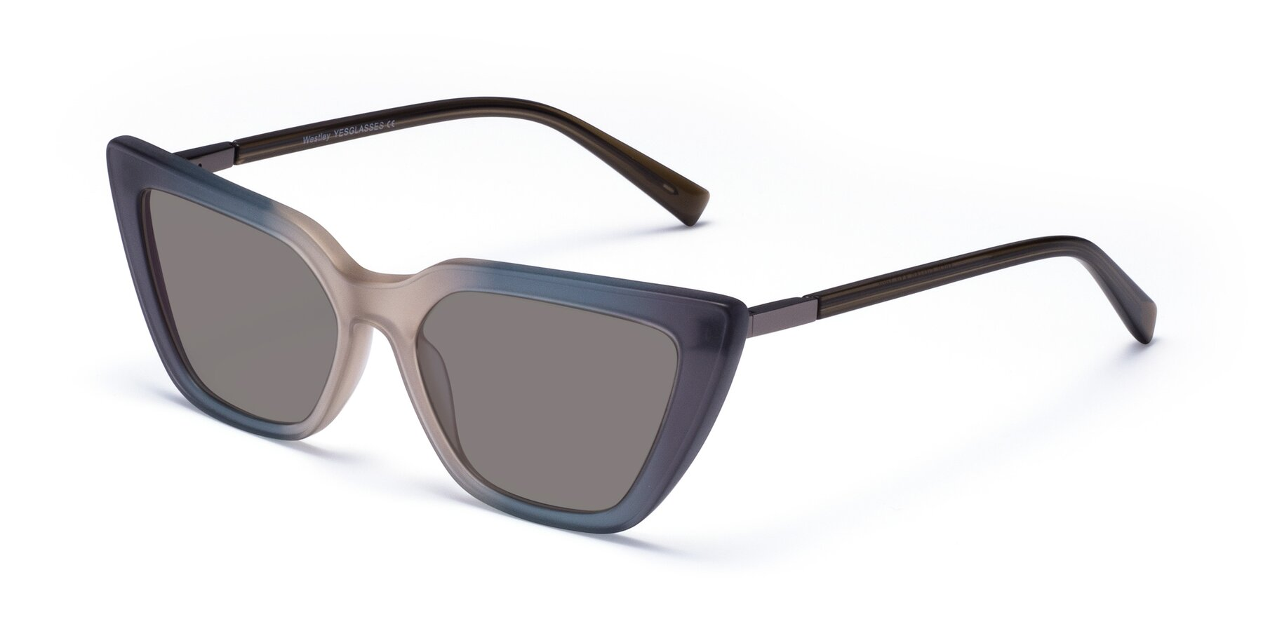 Angle of Westley in Gradient Grey with Medium Gray Tinted Lenses