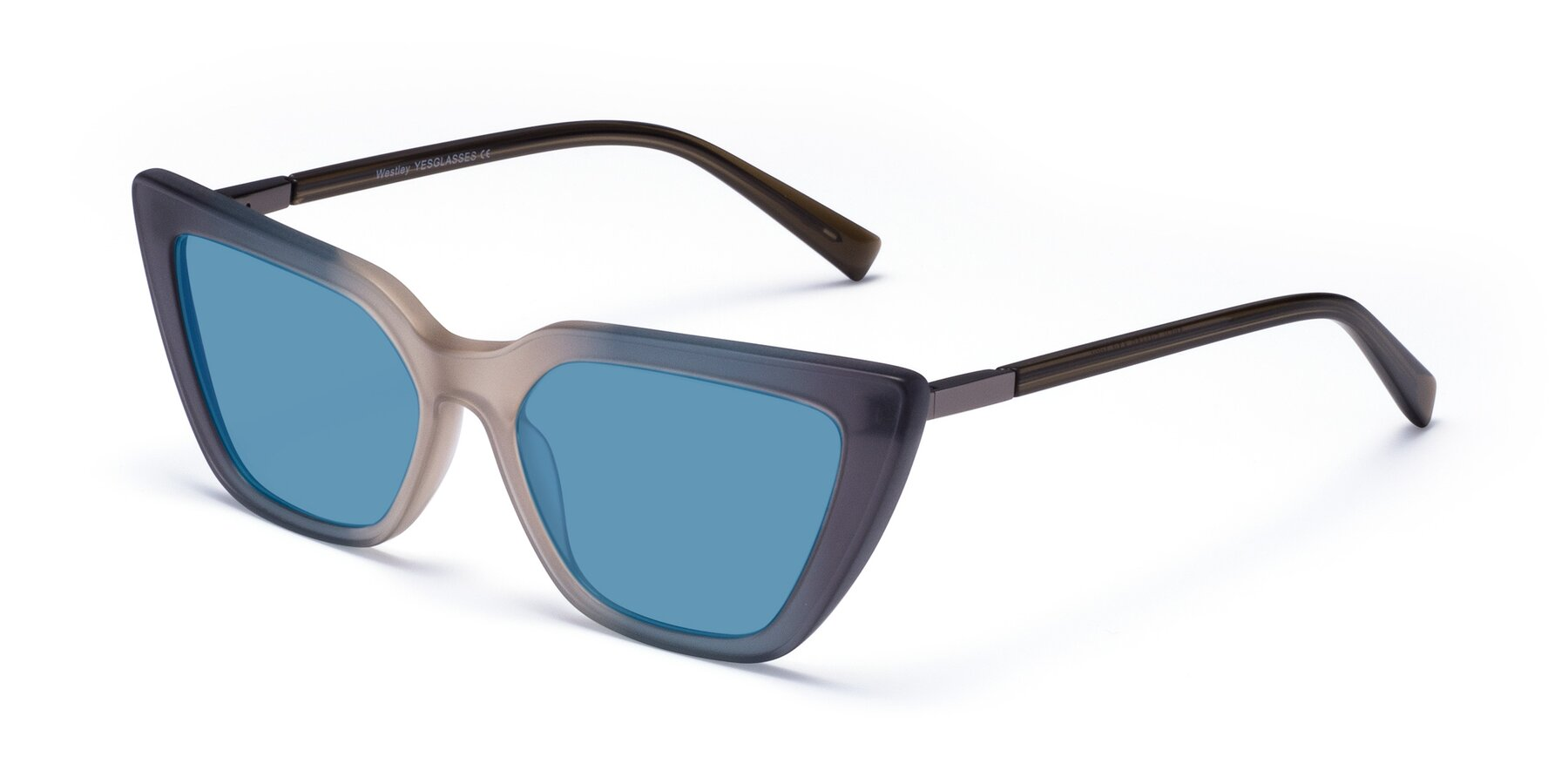 Angle of Westley in Gradient Grey with Medium Blue Tinted Lenses
