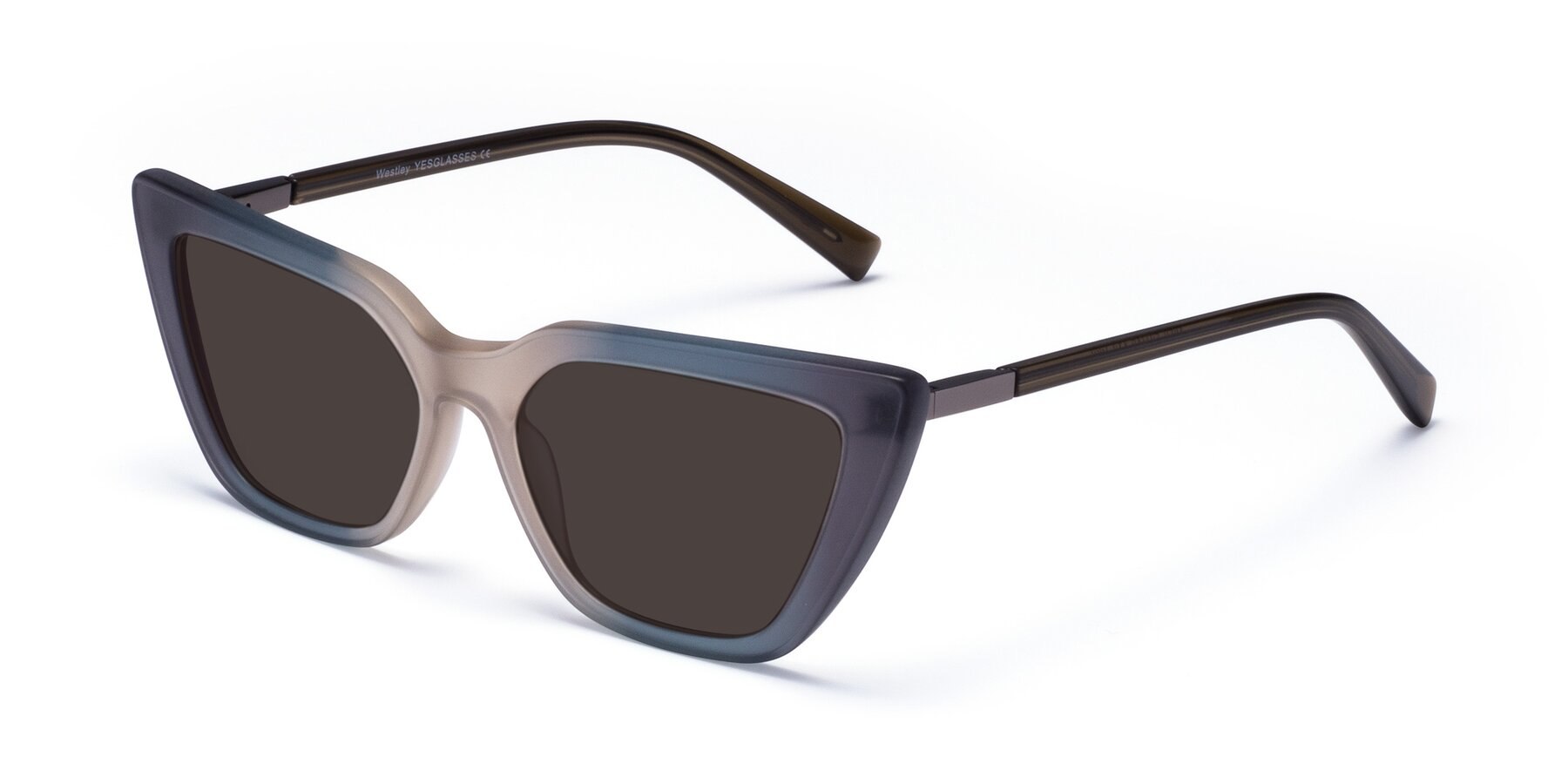 Angle of Westley in Gradient Grey with Gray Tinted Lenses