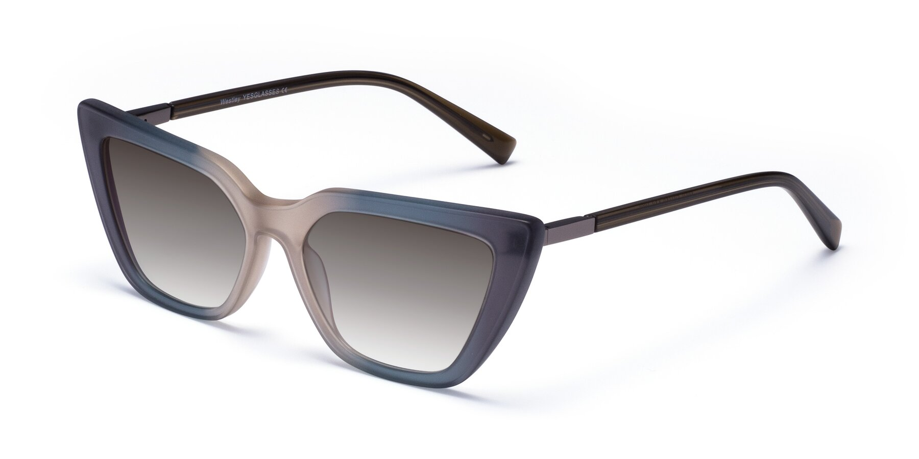 Angle of Westley in Gradient Grey with Gray Gradient Lenses