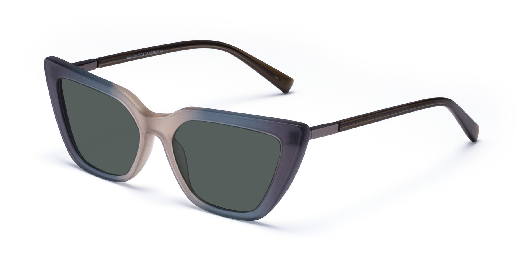 Angle of Westley in Gradient Grey with Gray Polarized Lenses