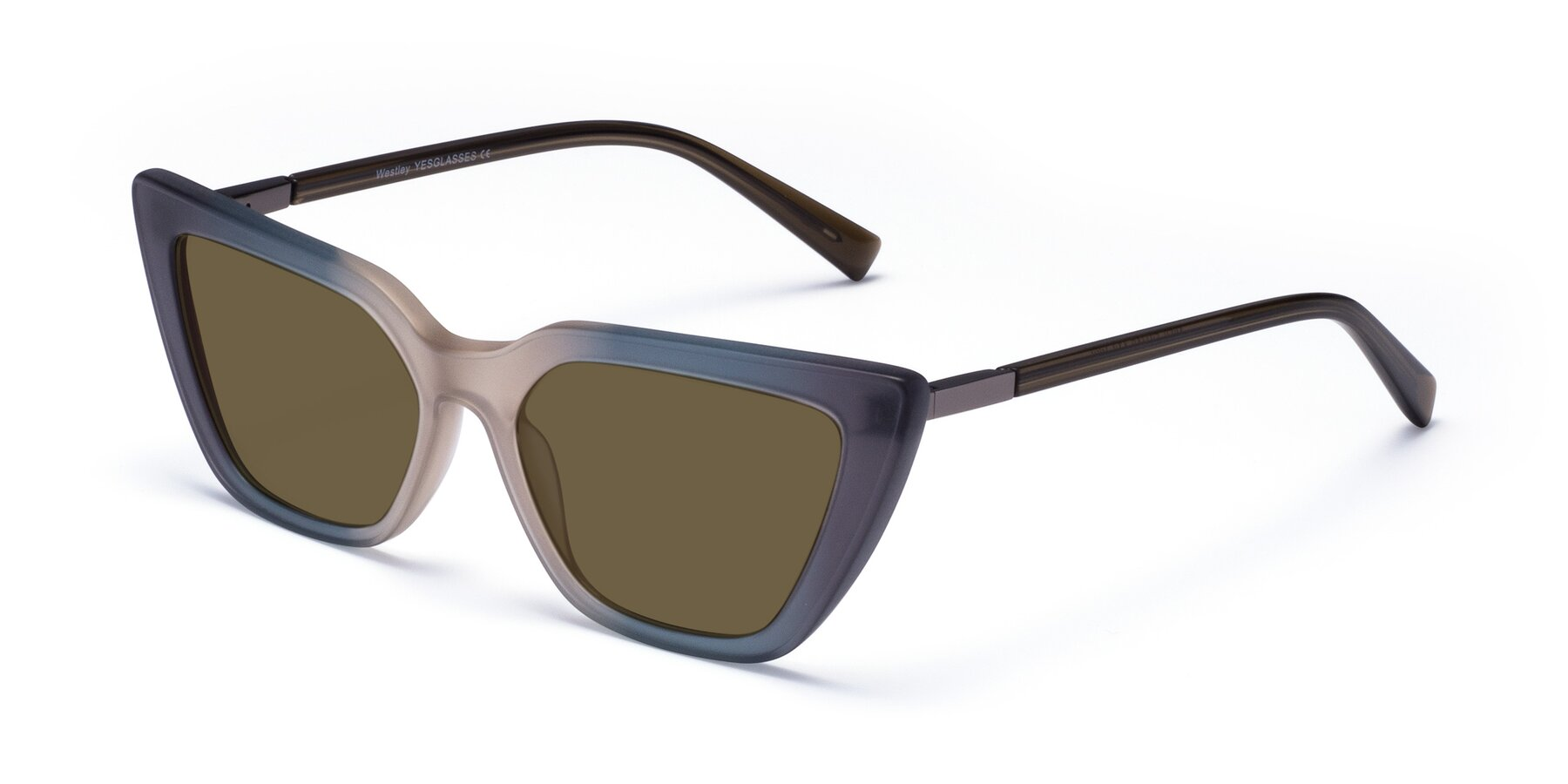 Angle of Westley in Gradient Grey with Brown Polarized Lenses