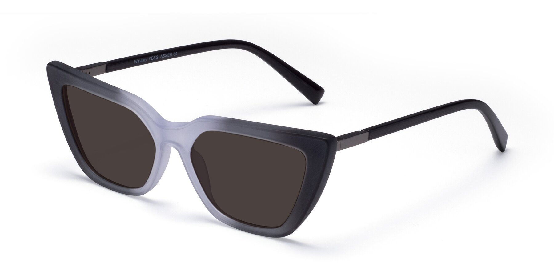Angle of Westley in Gradient Black with Gray Tinted Lenses
