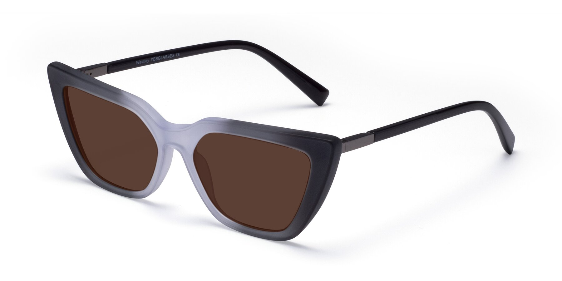 Angle of Westley in Gradient Black with Brown Tinted Lenses