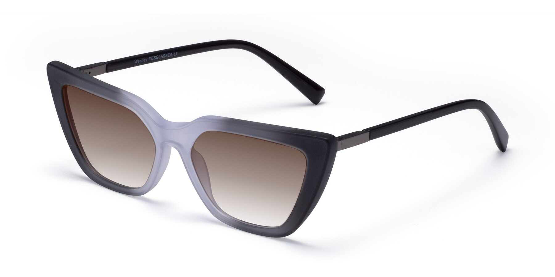 Angle of Westley in Gradient Black with Brown Gradient Lenses