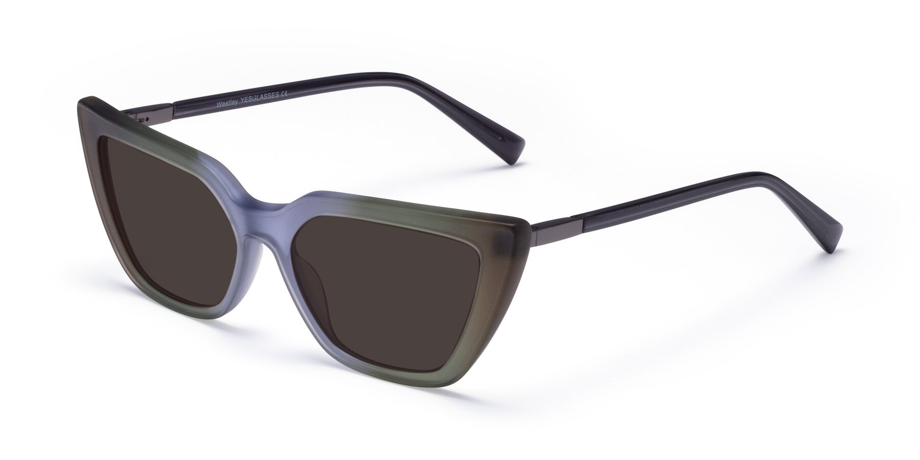 Angle of Westley in Gradient Green with Gray Tinted Lenses