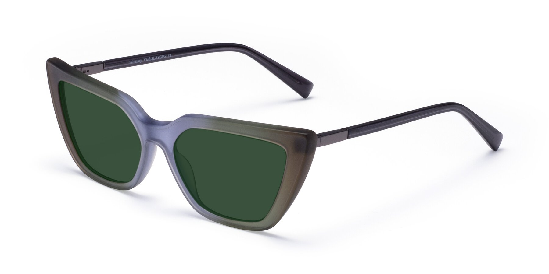 Angle of Westley in Gradient Green with Green Tinted Lenses