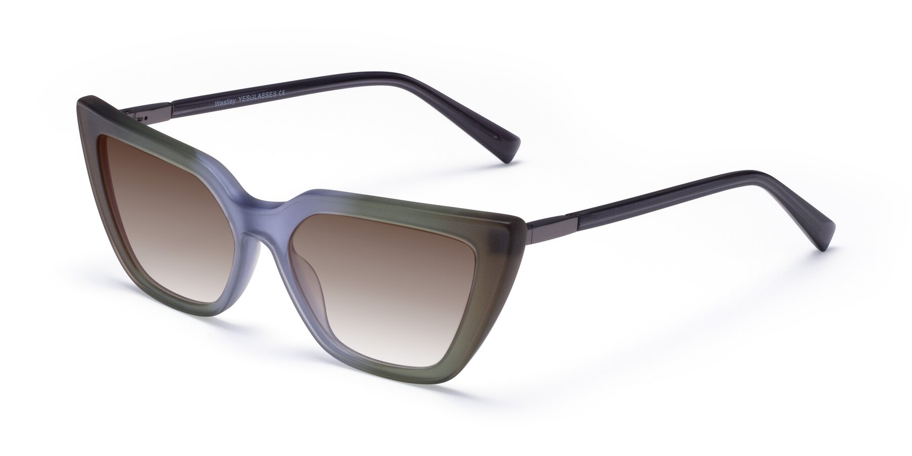 Angle of Westley in Gradient Green with Brown Gradient Lenses