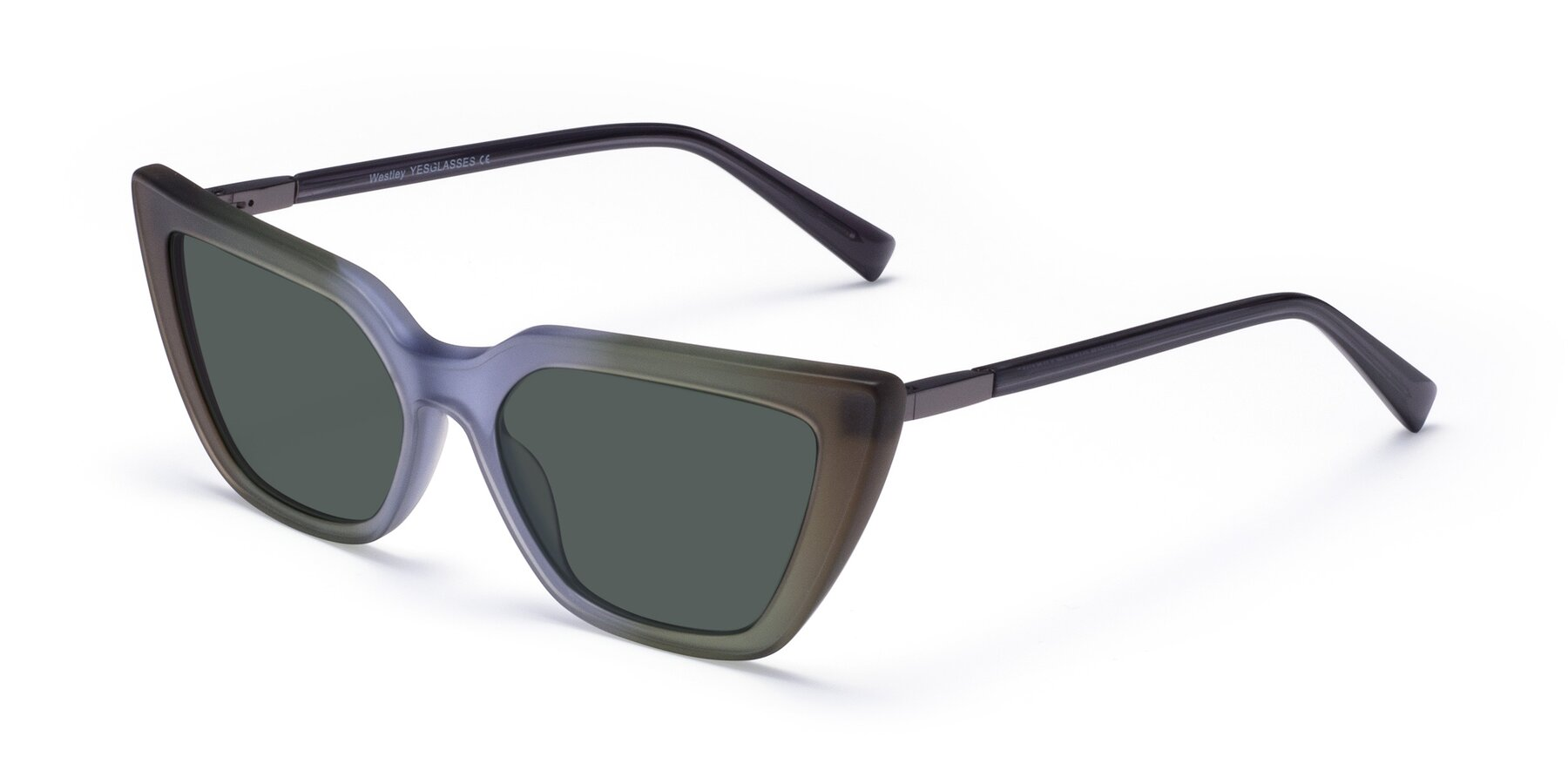 Angle of Westley in Gradient Green with Gray Polarized Lenses