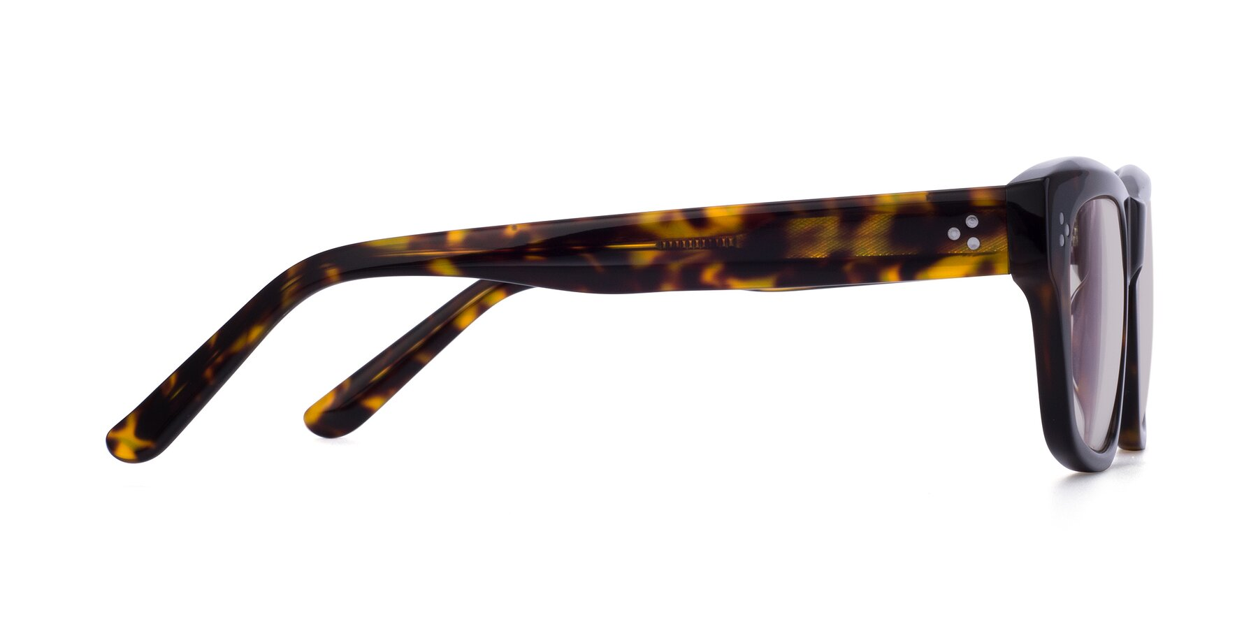 Side of April in Tortoise with Light Brown Tinted Lenses