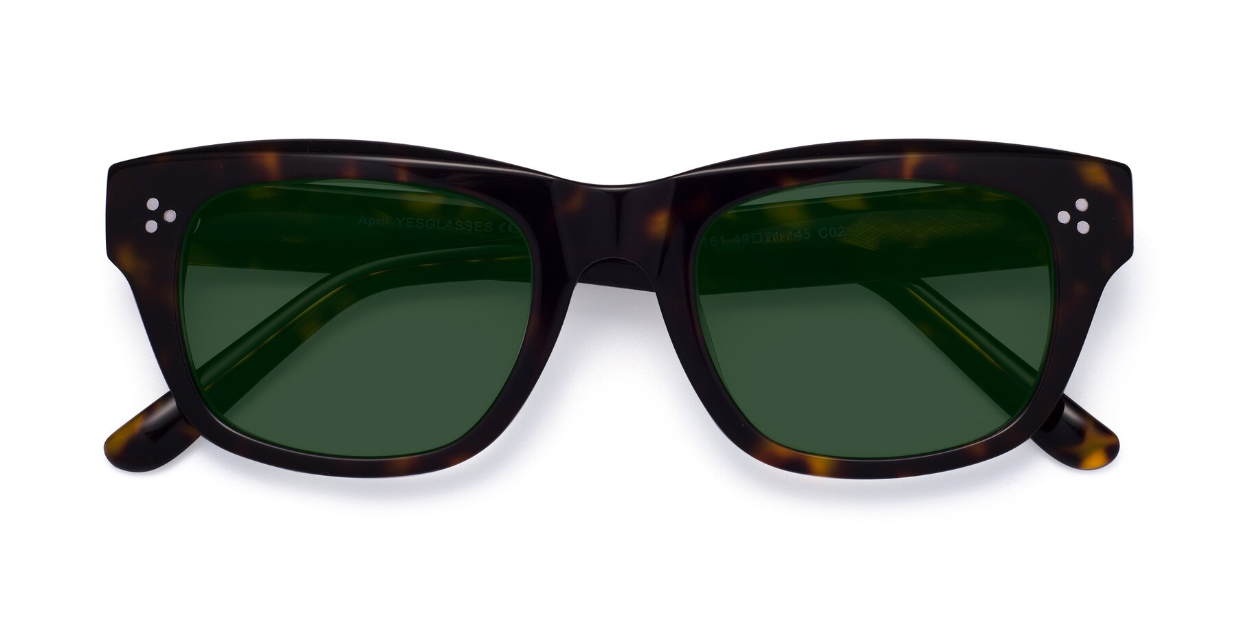 Folded Front of April in Tortoise with Green Tinted Lenses