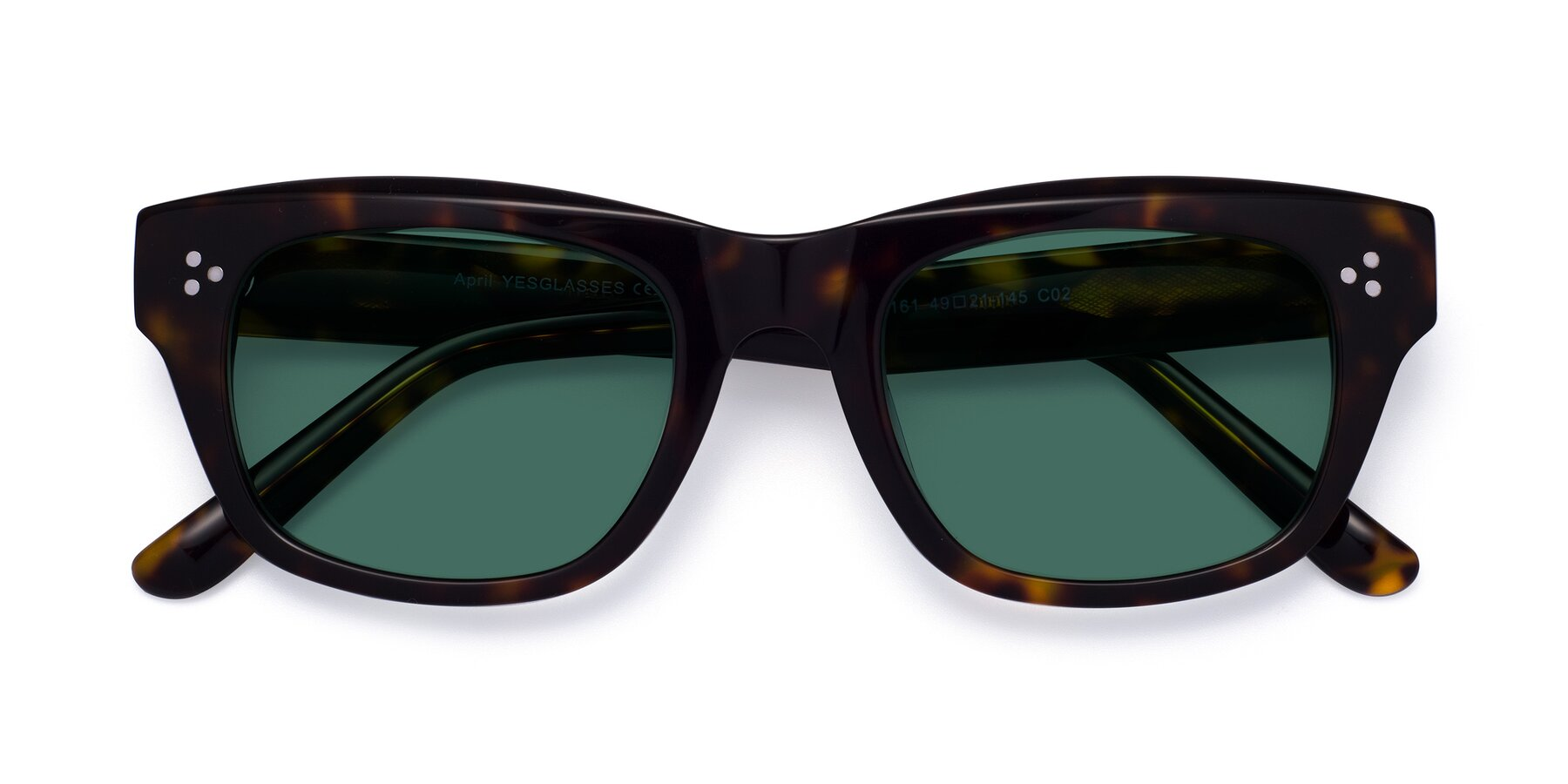 Folded Front of April in Tortoise with Green Polarized Lenses