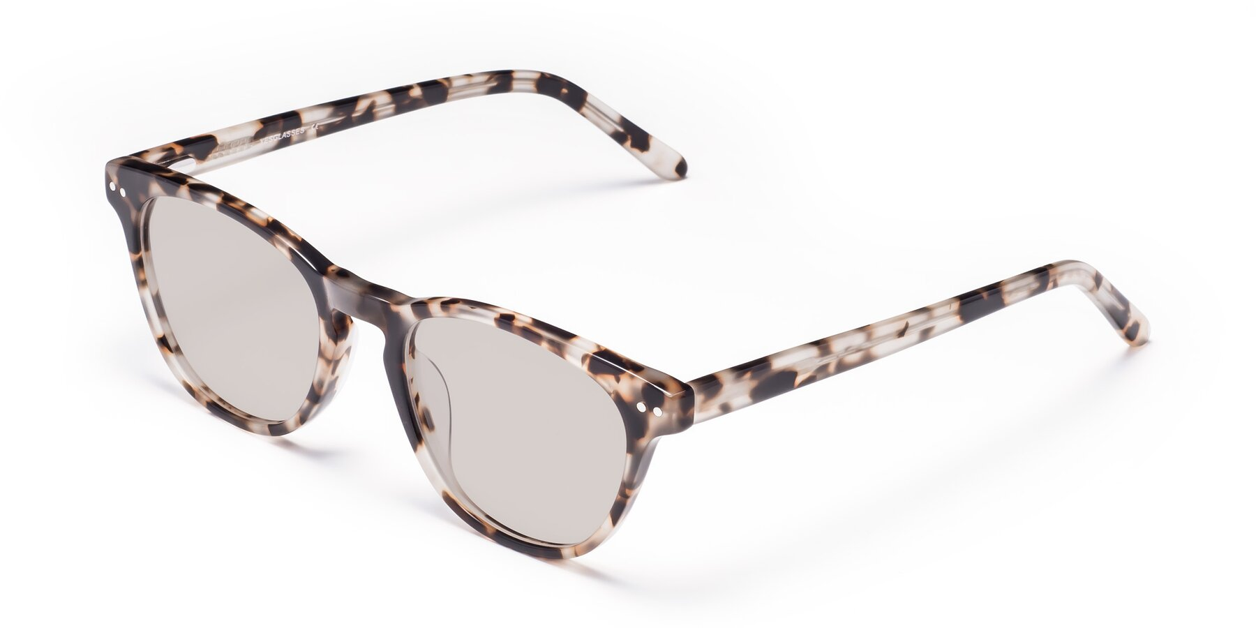 Angle of Blaze in Tortoise with Light Brown Tinted Lenses