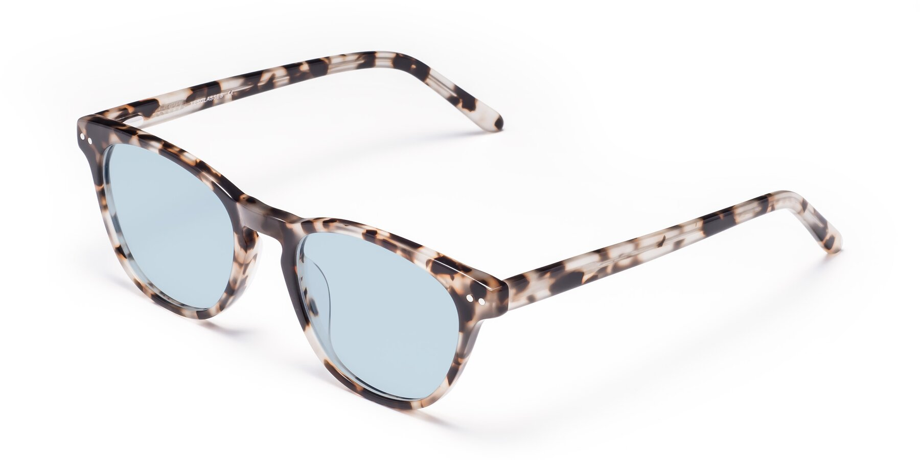 Angle of Blaze in Tortoise with Light Blue Tinted Lenses