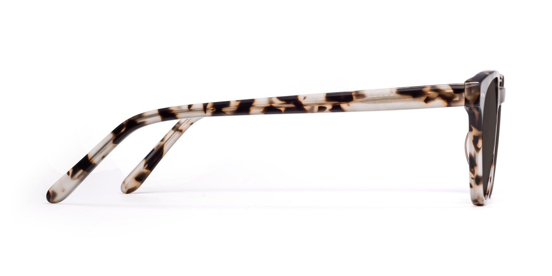 Side of Blaze in Tortoise with Gray Tinted Lenses