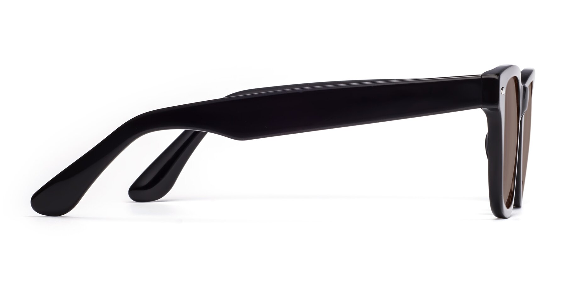 Side of Rocky in Black with Medium Brown Tinted Lenses