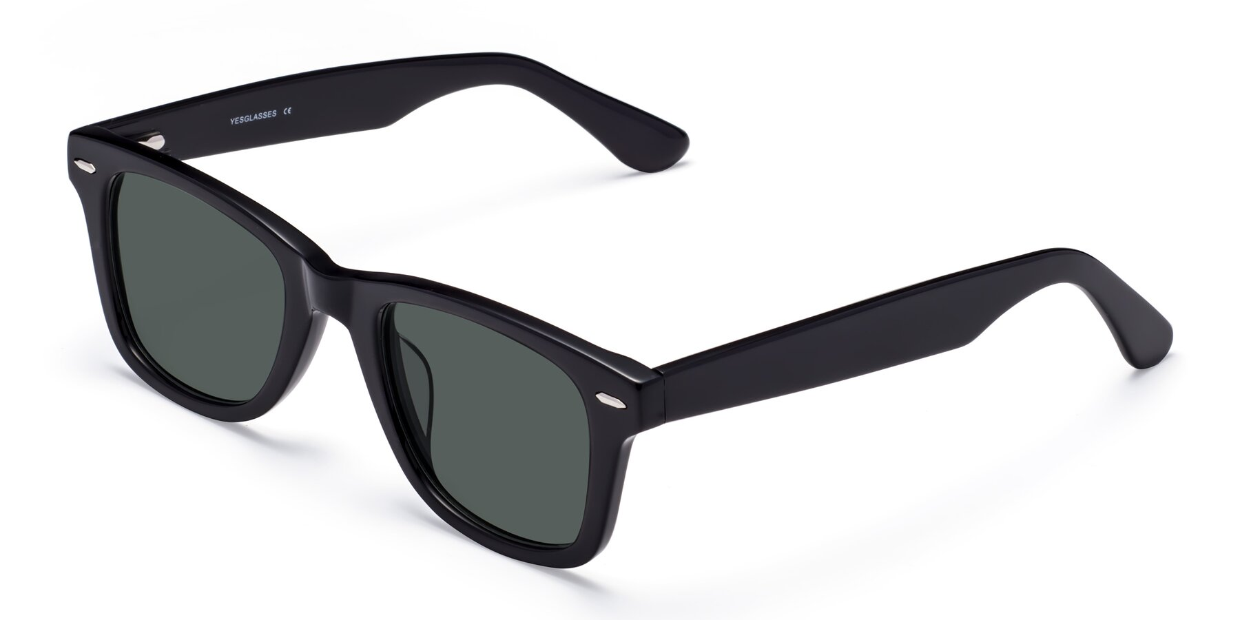 Angle of Rocky in Black with Gray Polarized Lenses