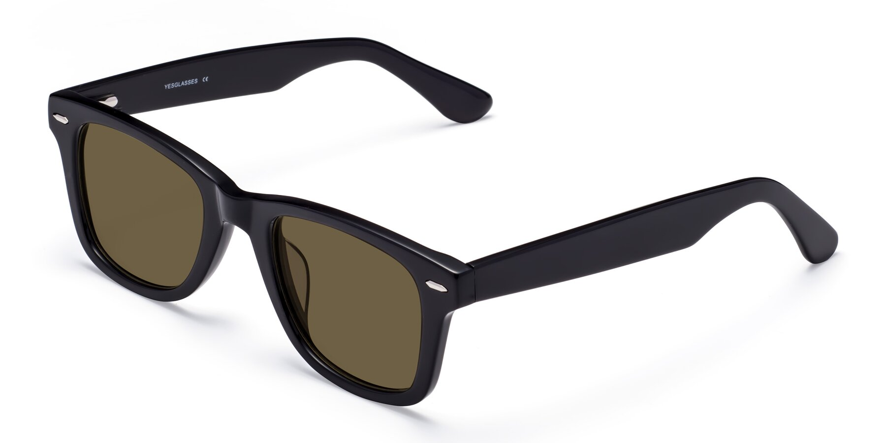 Angle of Rocky in Black with Brown Polarized Lenses
