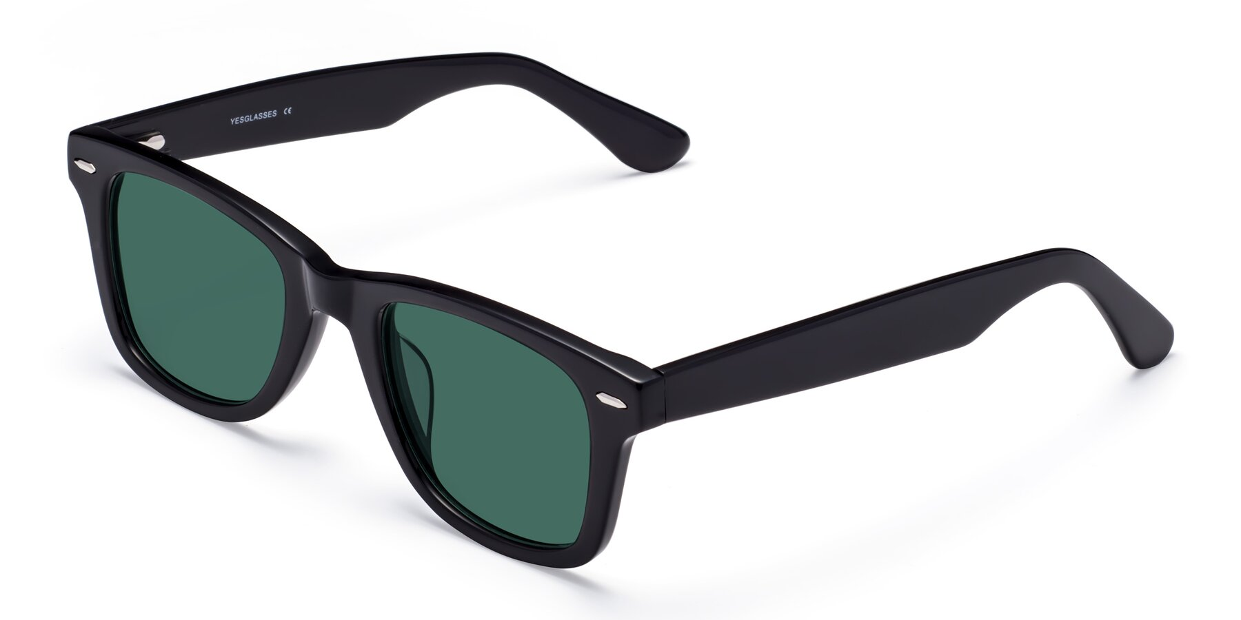 Angle of Rocky in Black with Green Polarized Lenses
