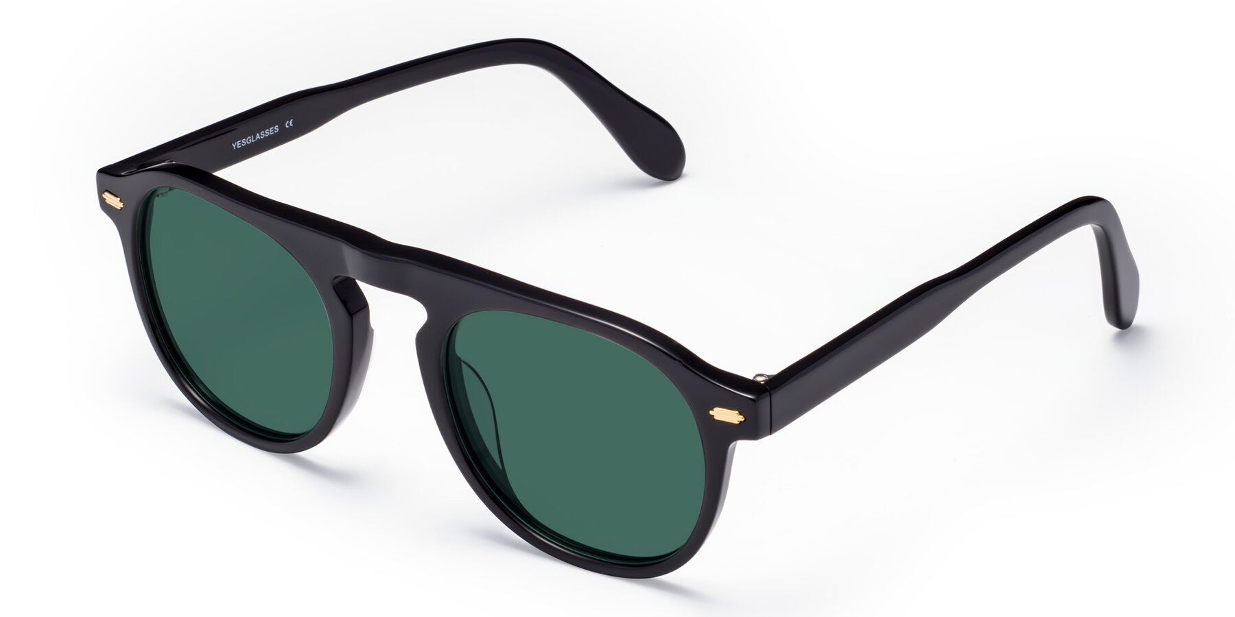 Angle of Mufasa in Black with Green Polarized Lenses