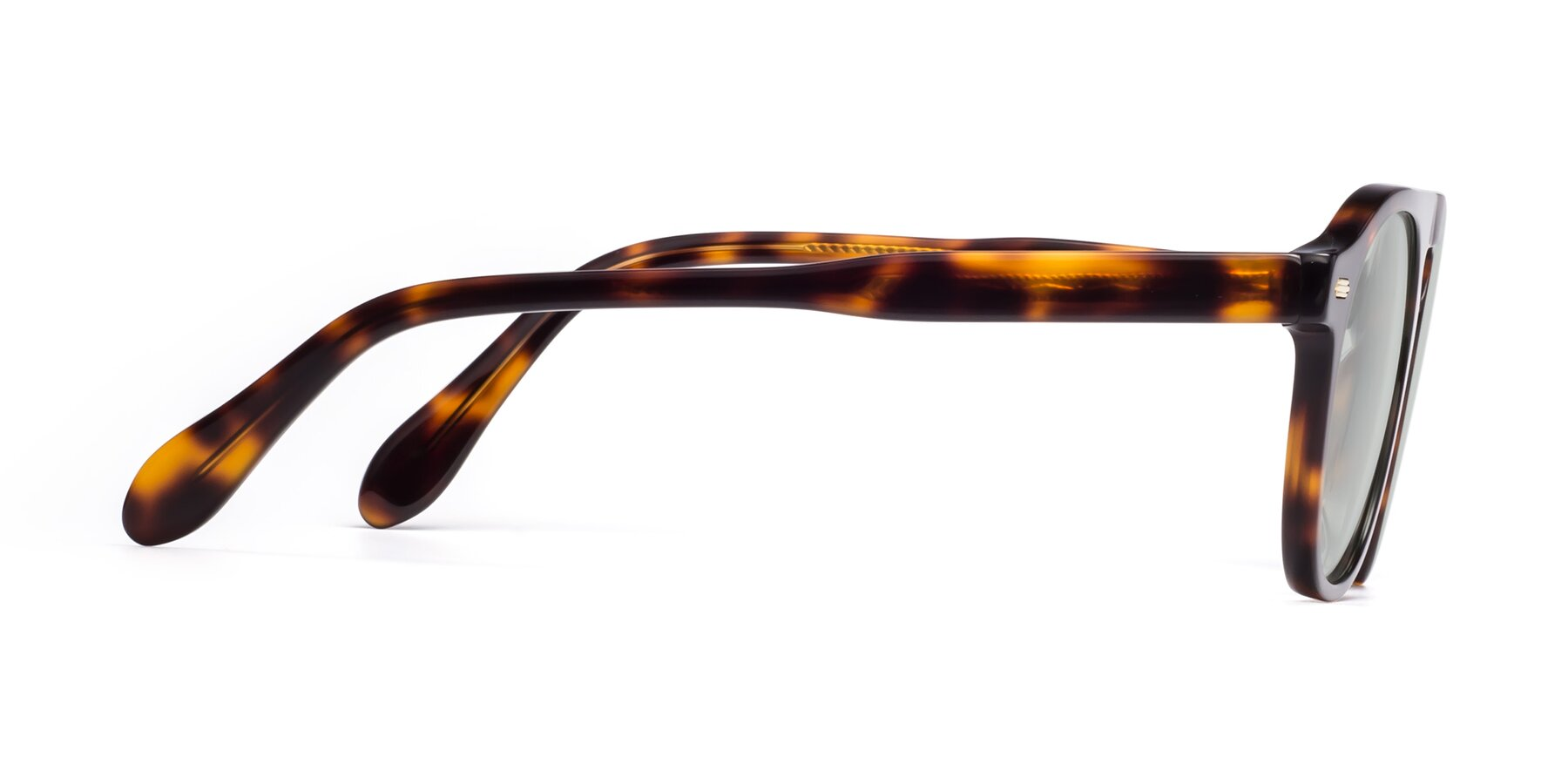 Side of Mufasa in Tortoise with Light Green Tinted Lenses