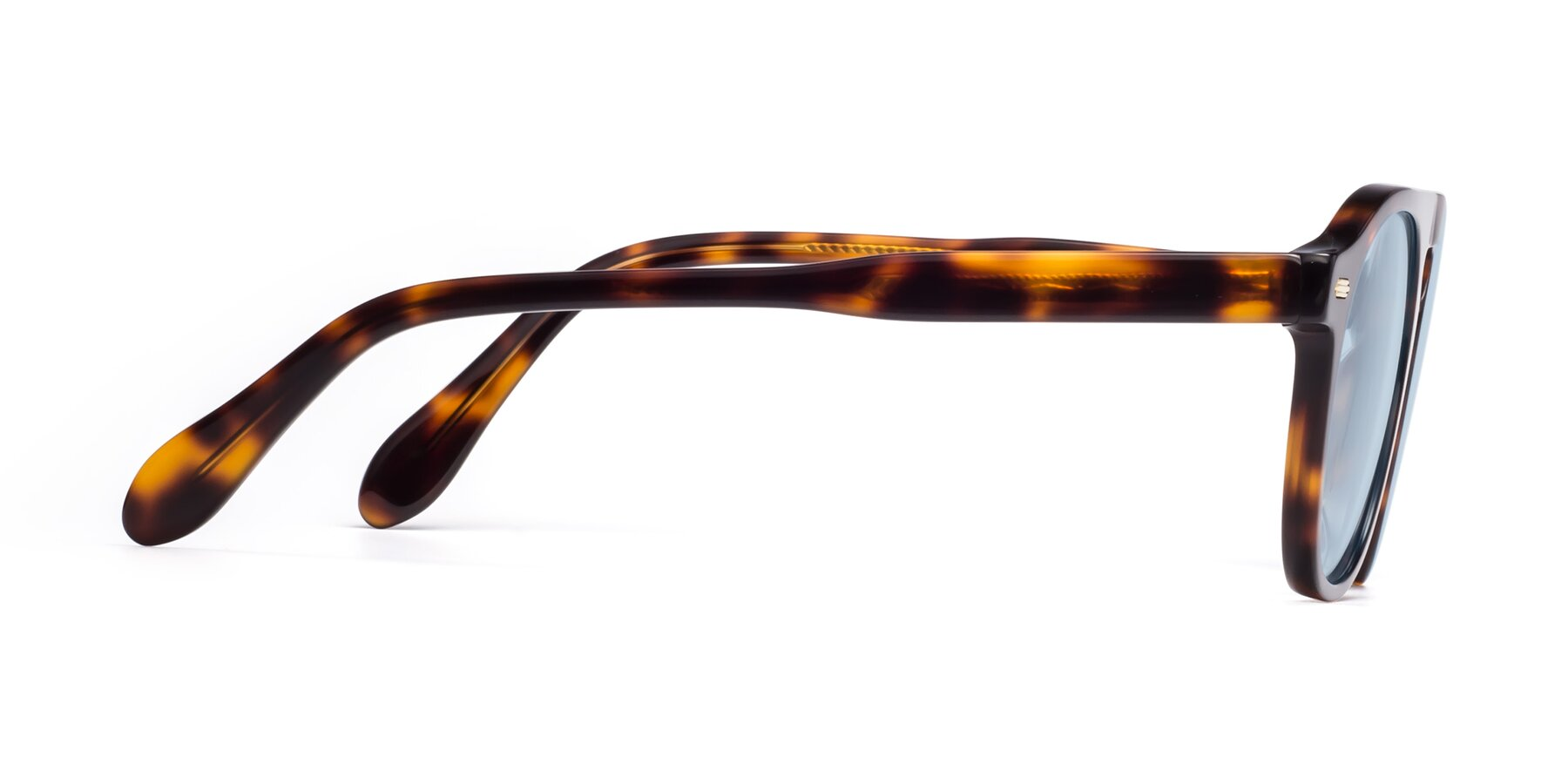Side of Mufasa in Tortoise with Light Blue Tinted Lenses