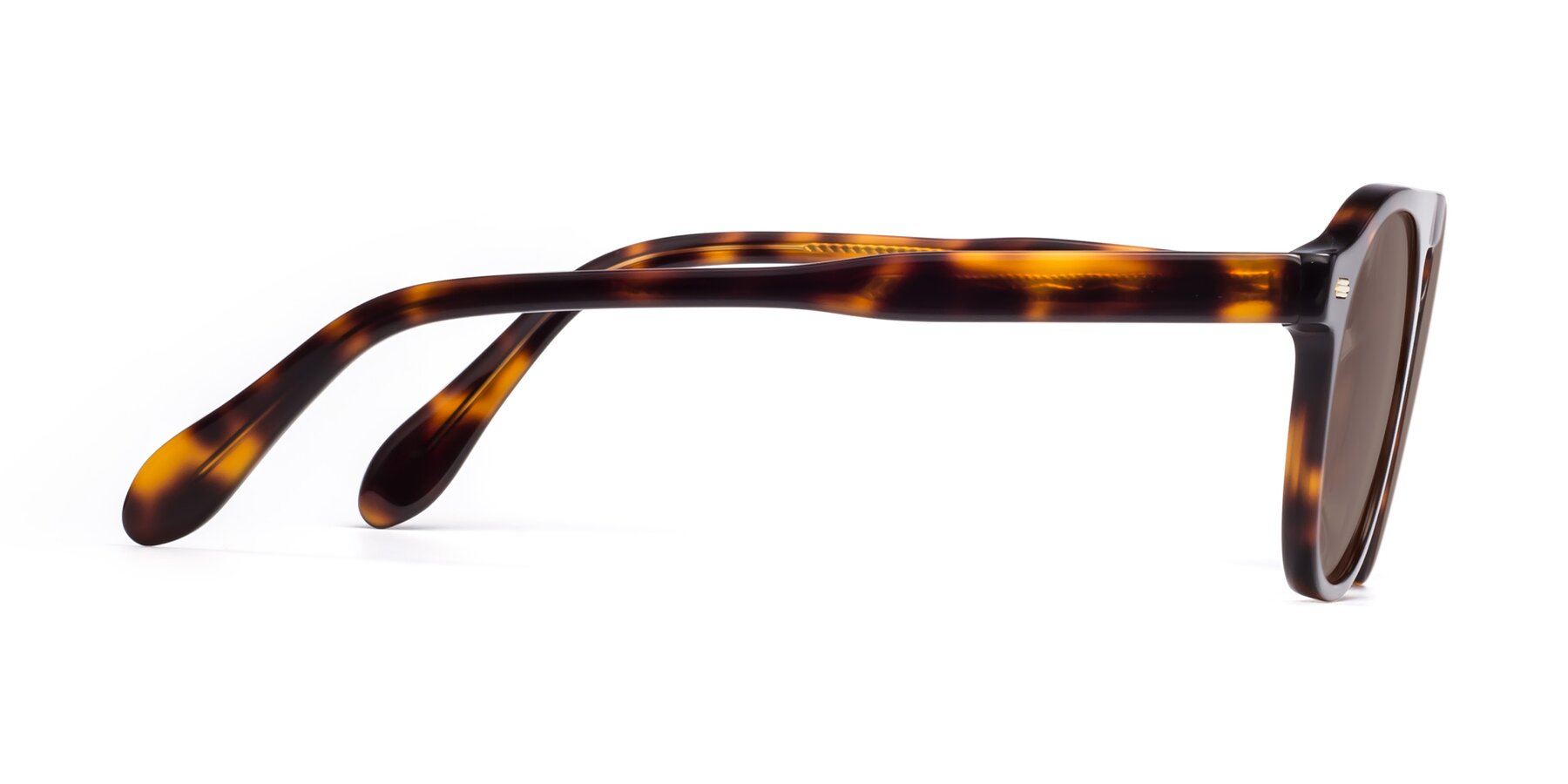 Side of Mufasa in Tortoise with Medium Brown Tinted Lenses