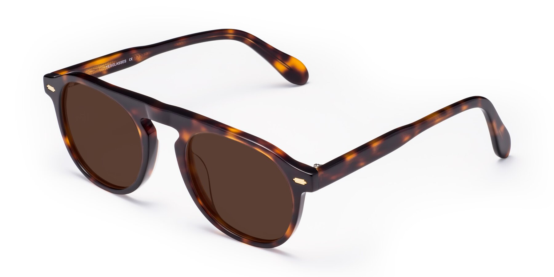 Angle of Mufasa in Tortoise with Brown Tinted Lenses