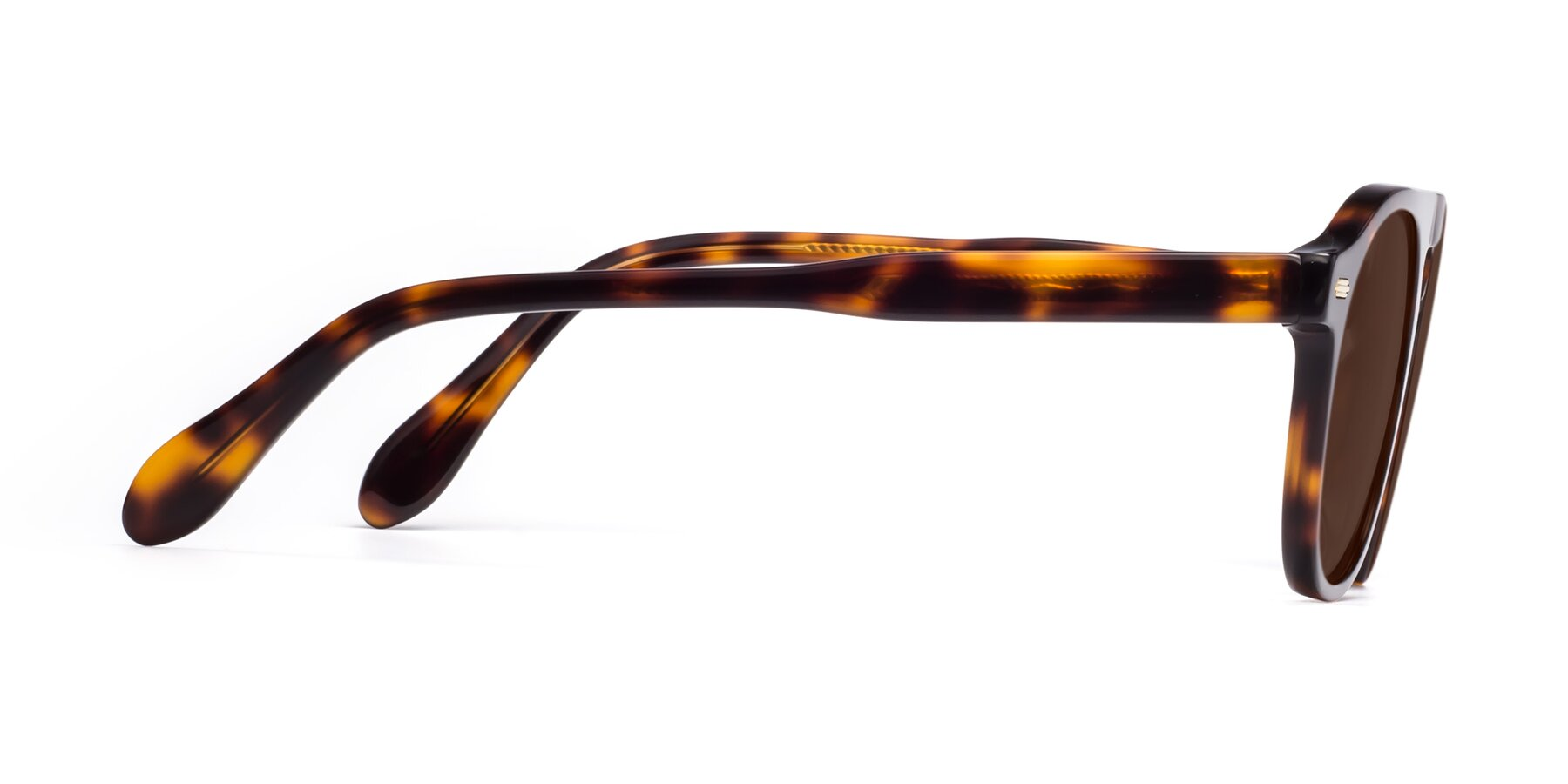 Side of Mufasa in Tortoise with Brown Tinted Lenses