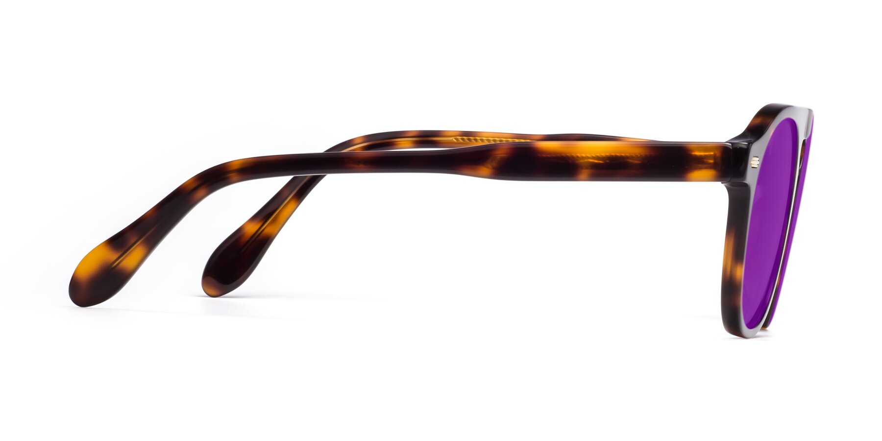 Side of Mufasa in Tortoise with Purple Tinted Lenses
