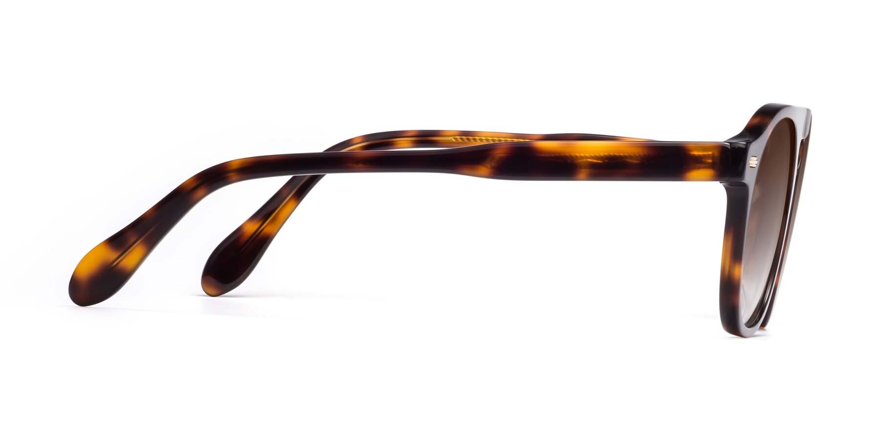 Side of Mufasa in Tortoise with Brown Gradient Lenses