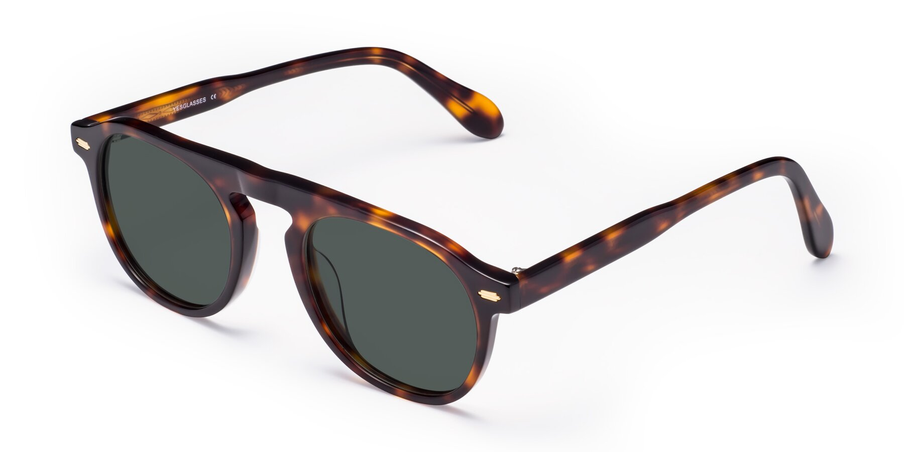 Angle of Mufasa in Tortoise with Gray Polarized Lenses
