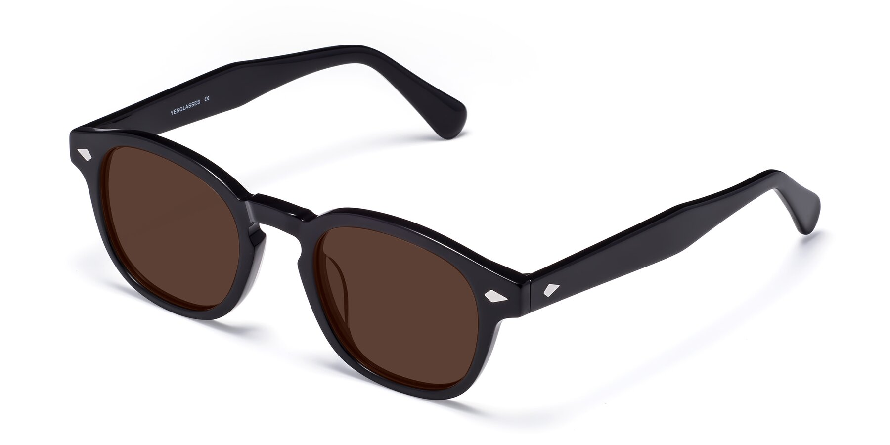 Angle of WALL-E in Black with Brown Tinted Lenses